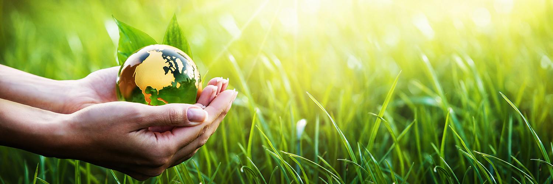 Interview zum Berufsbild des Technikers für Umweltschutz und regenerative Energien