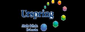 Logo Urspringschule